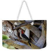 Red-bellied Woodpecker Hides On A Cabbage Palm Weekender Tote Bag