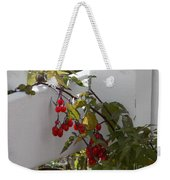 Red Berries On A White Fence Weekender Tote Bag