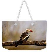 Red-billed Hornbill Weekender Tote Bag