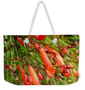 Red Blossoms Of A Firecracker Plant Weekender Tote Bag