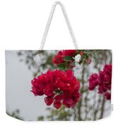 red bougainvillea in Laguna Guerrero Weekender Tote Bag