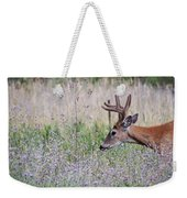 Red Bucks 4 Weekender Tote Bag by Antonio Romero