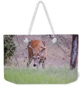 Red Bucks 6 Weekender Tote Bag by Antonio Romero