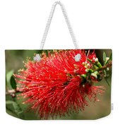 Red Burst Weekender Tote Bag by Valeria Donaldson