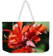 Red Canna Flower Weekender Tote Bag