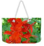 Red Crocosmia Lucifer Weekender Tote Bag