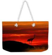Red Crowned Crane At Dusk Weekender Tote Bag