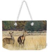 Red Deer 7 Weekender Tote Bag