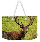 Red Deer Weekender Tote Bag