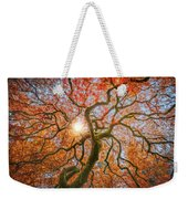 Red Dragon Japanese Maple In Autumn Colors Weekender Tote Bag