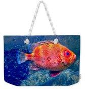 Red Fish Blue Fish Weekender Tote Bag