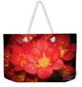 Multiple Red Flowers In Bloom Weekender Tote Bag