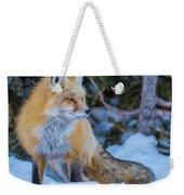 Red Fox At Dawn In Winter Weekender Tote Bag