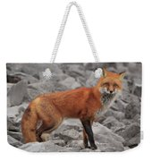 Red Fox Weekender Tote Bag
