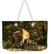 Red Fox In Shadows Weekender Tote Bag