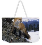 Red Fox In The Mountains Weekender Tote Bag