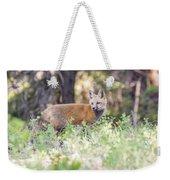 Red Fox Kit Looking For Mom Weekender Tote Bag