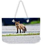 Red Fox Kit On Road Weekender Tote Bag