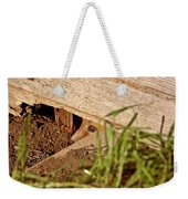 Red Fox Kit Peaking Out From Den Under Old Granary Weekender Tote Bag