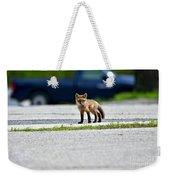Red Fox Kit Standing On Old Road Weekender Tote Bag