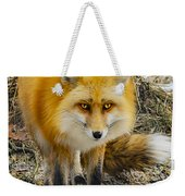 Red Fox Nature Girl Weekender Tote Bag