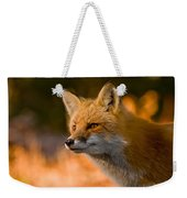 Red Fox Pictures 118 Weekender Tote Bag