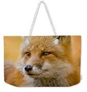 Red Fox Pictures 131 Weekender Tote Bag