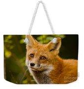 Red Fox Pictures 155 Weekender Tote Bag
