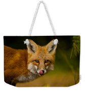 Red Fox Pictures 157 Weekender Tote Bag