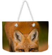 Red Fox Pictures 161 Weekender Tote Bag
