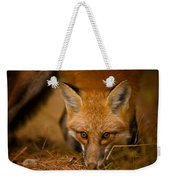 Red Fox Pictures 162 Weekender Tote Bag