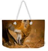 Red Fox Pictures 164 Weekender Tote Bag