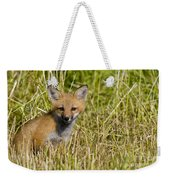 Red Fox Pictures 19 Weekender Tote Bag