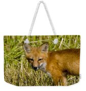 Red Fox Pictures 34 Weekender Tote Bag