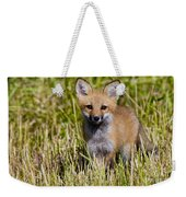 Red Fox Pictures 7 Weekender Tote Bag