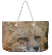 Red Fox Portrait Weekender Tote Bag