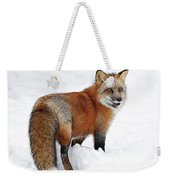 Red Fox Winter Weekender Tote Bag
