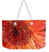 Red Gerbera Daisy Weekender Tote Bag