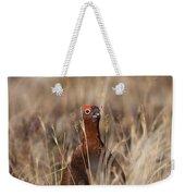 Red Grouse Calling Weekender Tote Bag