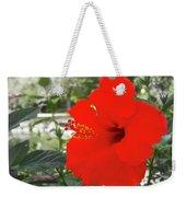 Red Gumamela  Weekender Tote Bag