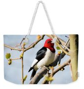 Red-headed Woodpecker At A Glace  Weekender Tote Bag