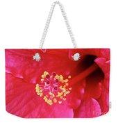 Red Hibiscus 3 Weekender Tote Bag