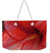 Red Hippeastrum Charisma Weekender Tote Bag