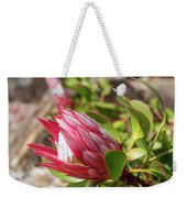 Red King Protea Bud Weekender Tote Bag