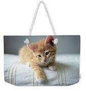 Red Kitten On A Beige Blanket Weekender Tote Bag