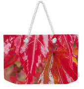 Red Leaf Abstract Weekender Tote Bag