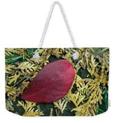 Red Leaf On  Arborvitae Leaves Weekender Tote Bag