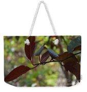 Red Leaves With Frame Weekender Tote Bag