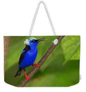 Red-legged Honeycreeper Weekender Tote Bag
