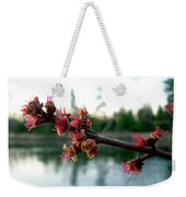 Red Maple Buds At Dawn Weekender Tote Bag